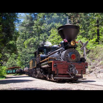 YMSP Shay 10 Mill Canyon