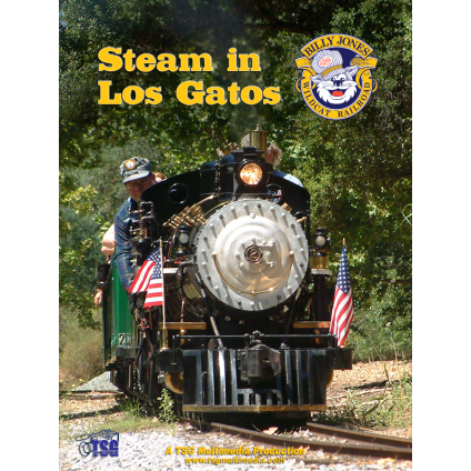 Steam in Los Gatos